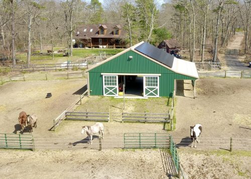 green horse barn to house horses