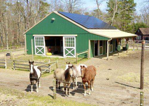 green horse barn builders in lancaster pa